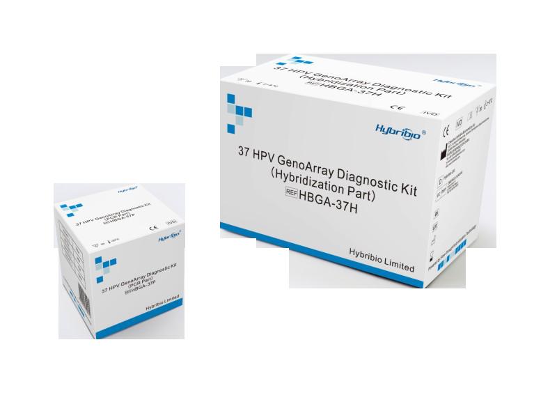 37 HPV GenoArray Diagnostic Kit (HBGA-37PKG)